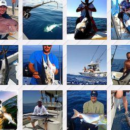 Fish, fishing e fisherman: dentice, aguglia imperiale, ricciola, pesce spada, tonno