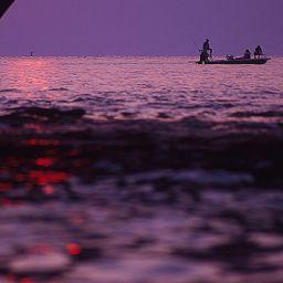 Pesca a Key West in Florida, alla ricerca dei tarpon