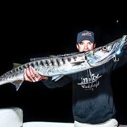 Pesca notturna con i popper ai barracuda.