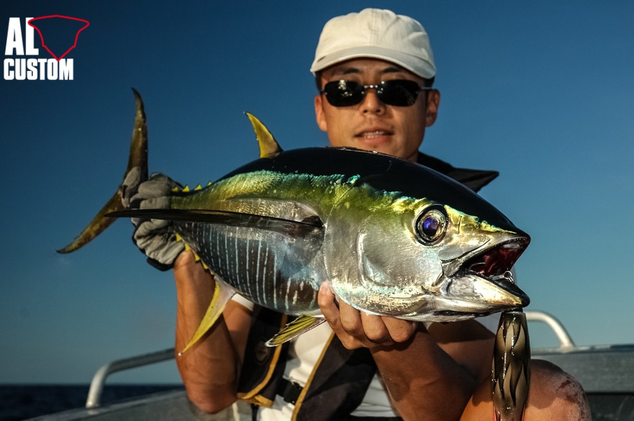A Yellowfin Tuna are fun to catch and even if less strong than the bluefin tuna.