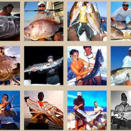 fish, fishing, fisherman, tarpon, aguglia imperiale, cernia, barracuda, dentice, tonno, ricciola