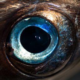 Il marlin, preda ambita della traina d'altura, ma anche fonte di cibo per chi lo insegue a bordo di vecchie piroghe