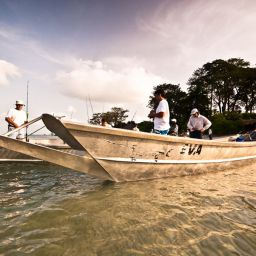 Pesca alle Bijagos: cubere a spinning, jack, mackerel, cobia, african pompano, tarpon giganti e squali tigre.