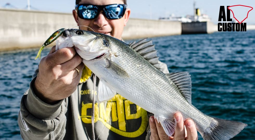 Pesca a soft bait: spinning alle spigole.