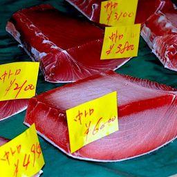 Il tonno al mercato del pesce di Tokio.