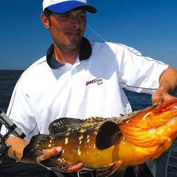 Pescando a bolentino l'incontro con la cernia bruna è molto raro e di difficile gestione.