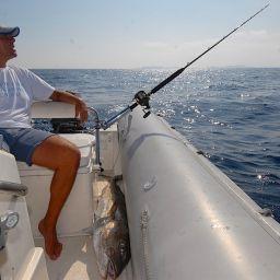 la pesca atraina col vivo alla ricciola richiede massima attenzione ai movimenti della canna in pesca.