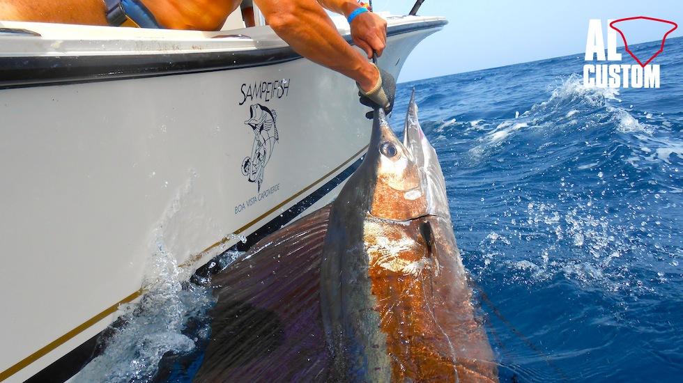 AL CUSTOM AL21 (Boa Vista - Capo Verde) impegnato in una battuta a traina con le esche artificiali. Pesce vela catch & release.