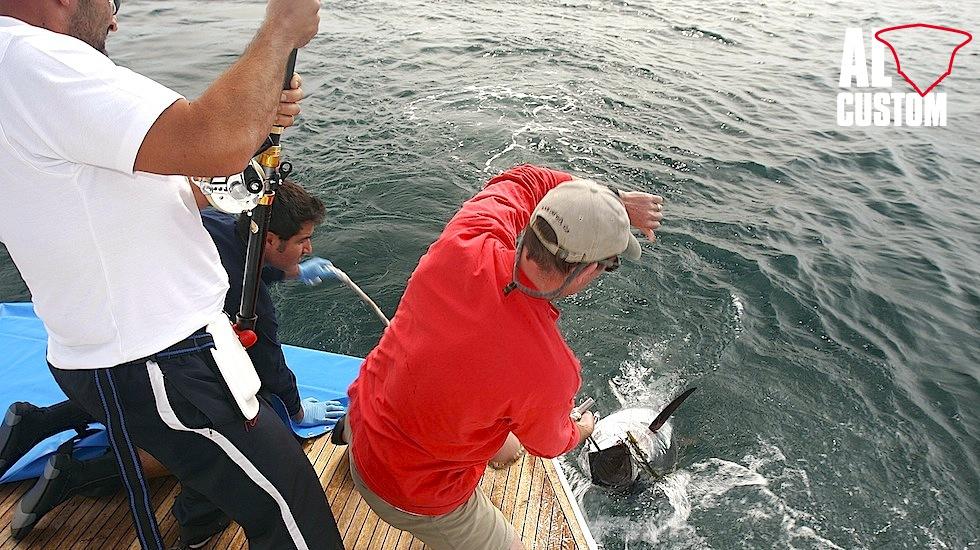 Tonno Catch & Release: l'applicazione dei tag satellitari permette la raccolta di dati sulle abitudini dei tonni.