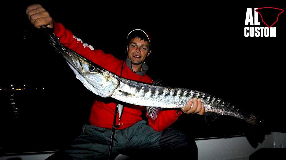 """Il barracuda è uno dei pesci più diffusi nelle acque di tutto il mondo e rappresenta spesso il """"battesimo del fuoco"""" di chi pesca con le esche artificiali."""
