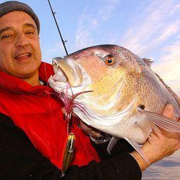 Un dentice pescato agli albori della pesca a jigging in Italia: esche artificiali importate dagli USA e tanto scetticismo.