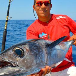 L'alalunga raggiunge una taglia massima di 60 kg per circa 140 centimetri di lunghezza, ma la media delle catture nel nostro mare è intorno ai 15-30 kg.