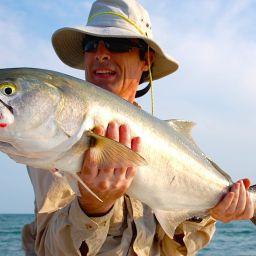 Il pesce serra é un gamefish perfetto: aggressivo, lunatico e sospettoso, mangia in superficie con attacchi spettacolari e si difende con forza e salti.