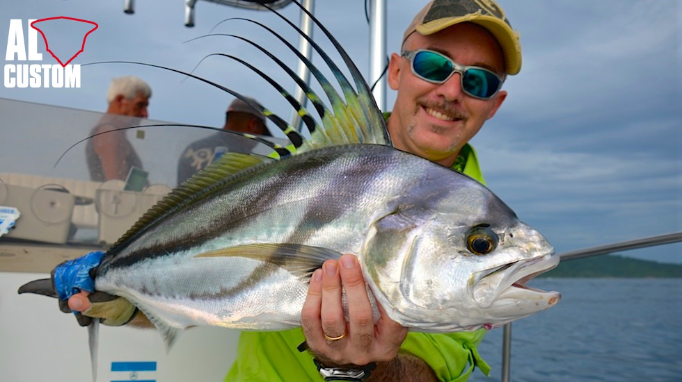The Roosterfish (Nematistius pectoralis) is a powerful and fascinating fish.