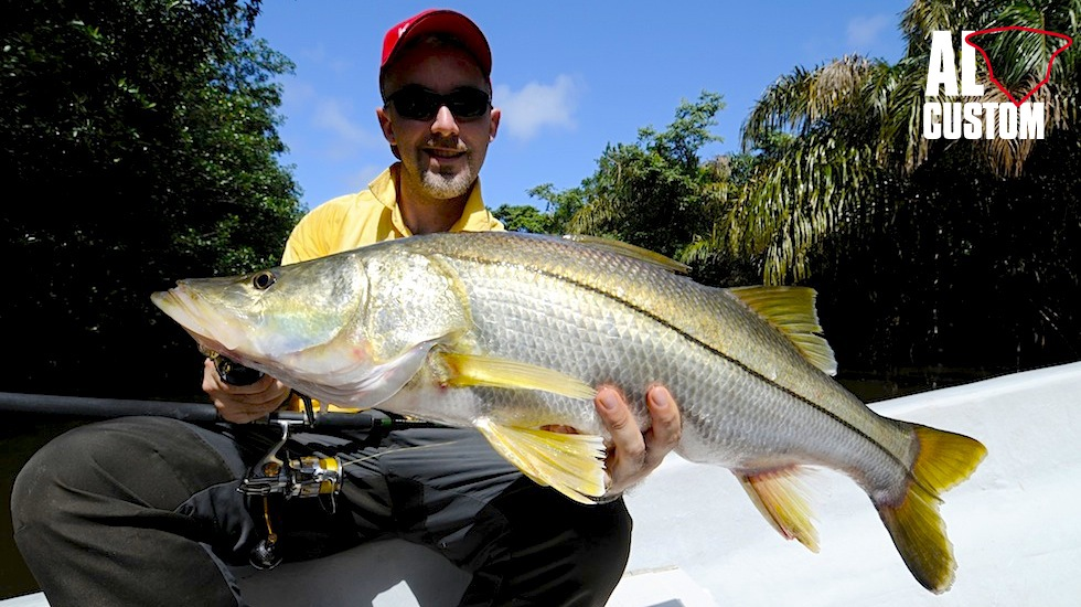 SNOOK: RUMBLE IN THE JUNGLE