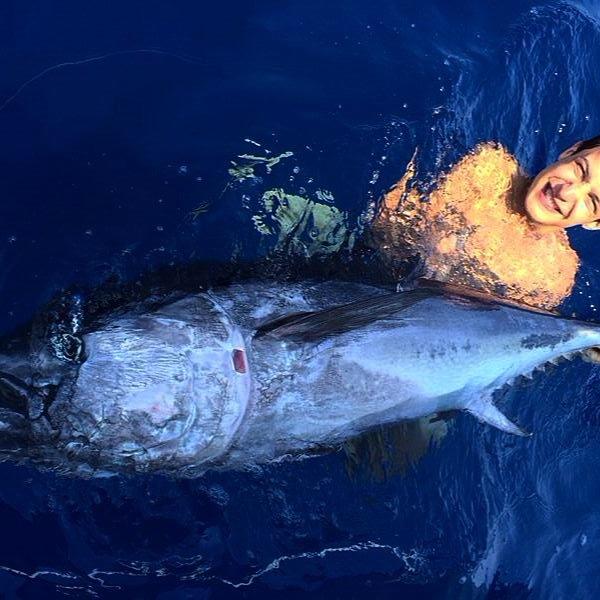 Tuna drifting (Mediterranean Sea, eastern Liguria). Fishing boat ALCUSTOM AL21