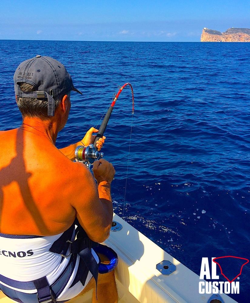Fishing boat ALCUSTOM AL21 Akabatuna: Bluefin Tuna, top shot