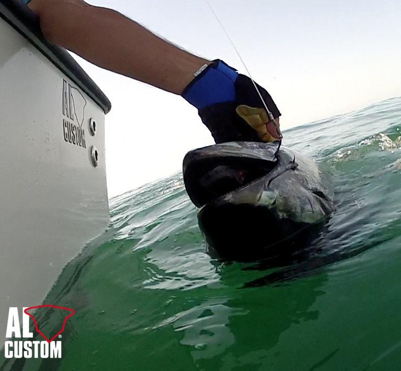 Drifting al tonno in Adriatico a bordo di una fishing boat AL CUSTOM AL25