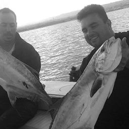 fishing, traina col vivo, leccia, AL CUSTOM, AL21