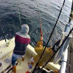 AL CUSTOM AL21 Hottuna: drifting al tonno