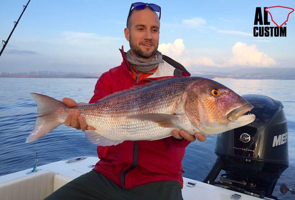"""Dentice a traina col vivo a bordo della fishing boat AL CUSTOM Al21 """"Fortuna"""""""