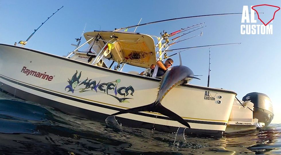 fishing boat AL CUSTOM AL25: drifting al tonno. Alto Adriatico, Golfo di Trieste.