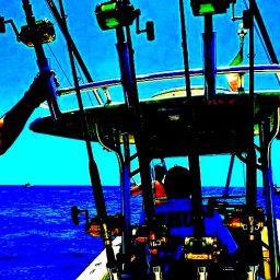 fishing boat ALCUSTOM AL25 a traina d'altura nell'arcipelago pontino.