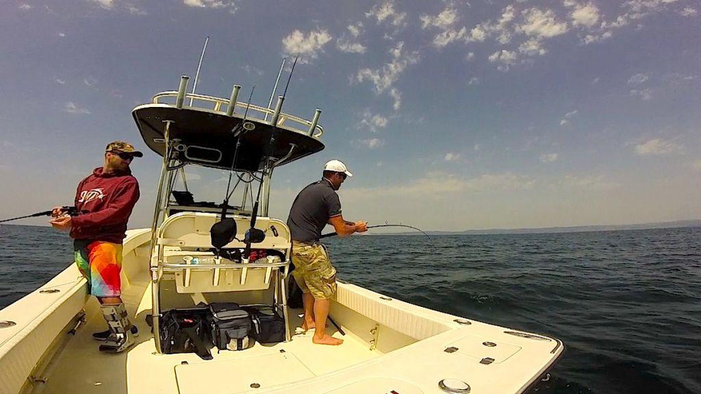 ALCUSTOM AL25: fisherman in carbonio ad alta tecnologia. Pesca a vertical Jigging