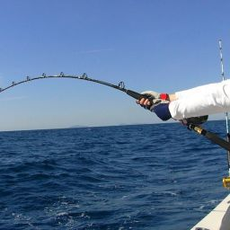 "Fishing boat ALCUSTOM AL19 ""SteVal"": drifting al tonno."