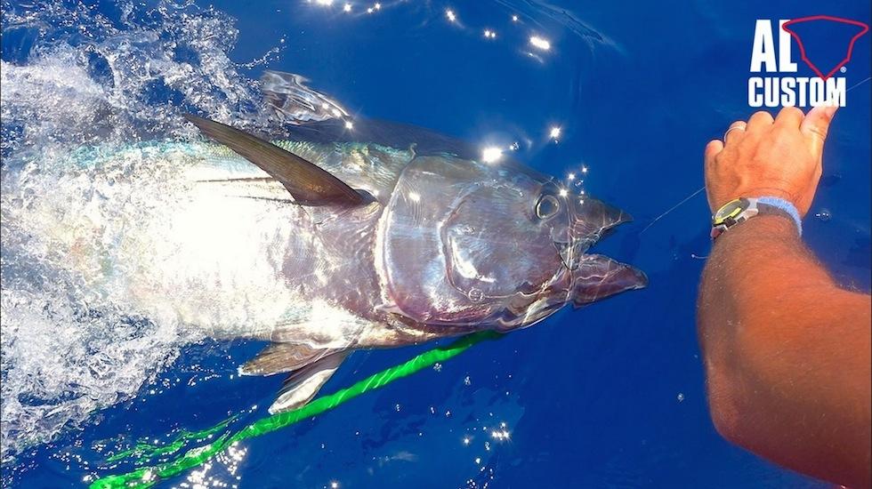 """La fishing boat ALCUSTOM AL25 """"Motus Maris"""" all'Elba Tuna Fishing, gara di drifting al tonno."""