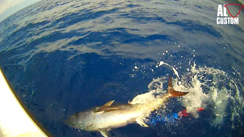 Tuna Festival Liguria: drifting al tonno in catch and release nel levante ligure