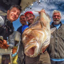 Fishing boat ALCUSTOM AL25 a traina col vivo. Pesca al dentice in Croazia.