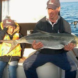 Fishing boat ALCUSTOM AL21. Leccia: traina col vivo