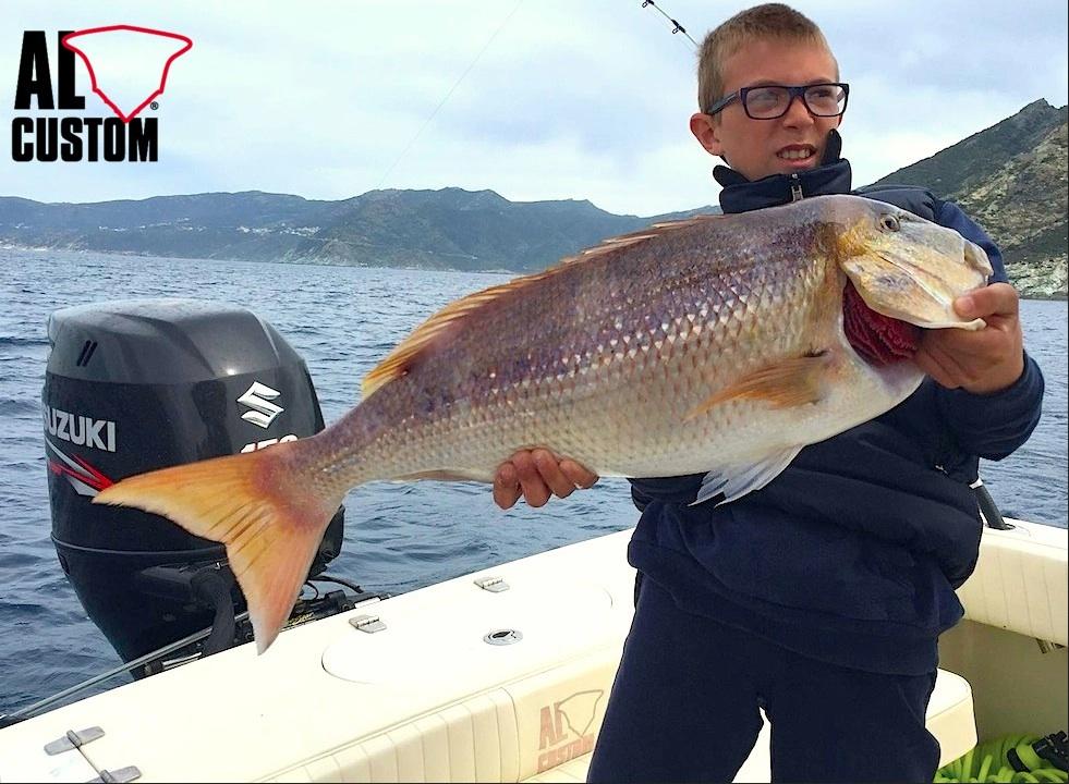 """ALCUSTOM AL21 """"Matrix"""": traina col vivo al dentice nel Golfo di Saint-Florent (Corsica)"""