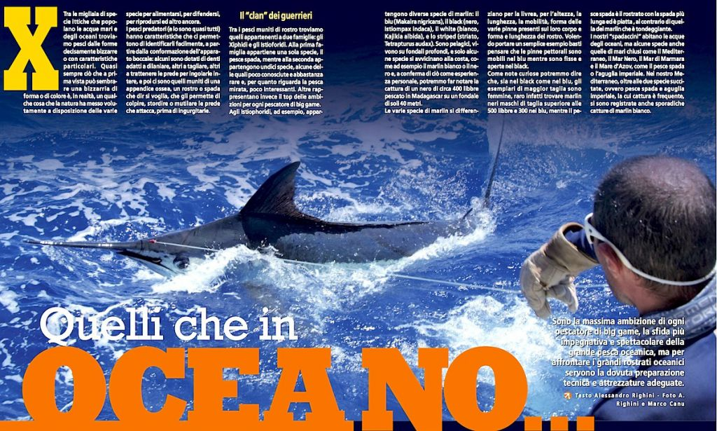 Big Game in oceano: la pesca a marlin, pesci spada e pesci vela