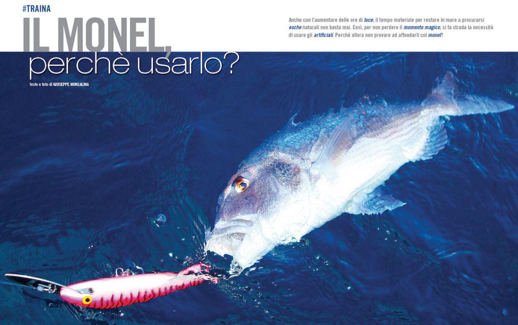 Traina con le esche artificiali: l'uso del monel. Pesca a traina dei dentici