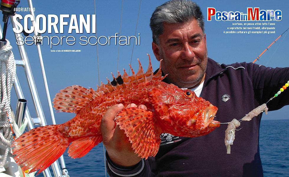 Adriatico: bolentino agli scorfani