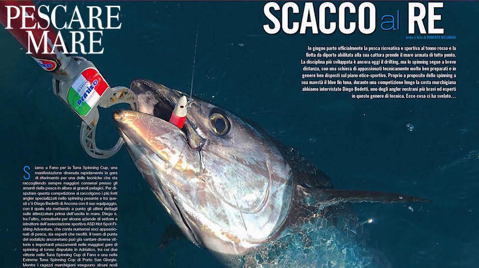 Spinning al tonno: tecnica di pesca e attrezzature
