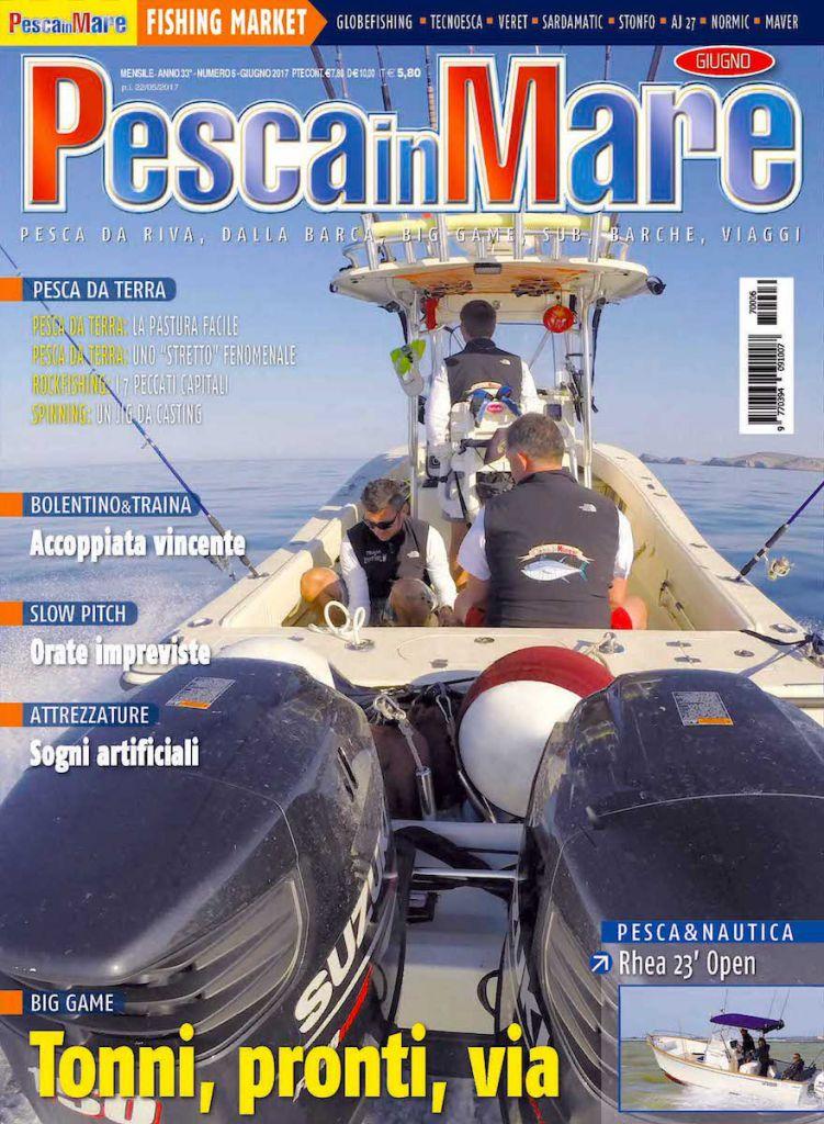 Pesca in mare giugno 2017: ALCUSTOM AL25 motorizzato Suzuki in copertina