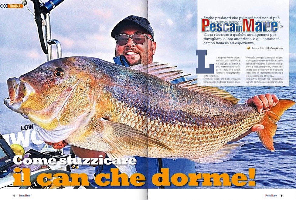 Traina col vivo ai dentici: tecniche di pesca, fishing tackle e piccoli trucchi