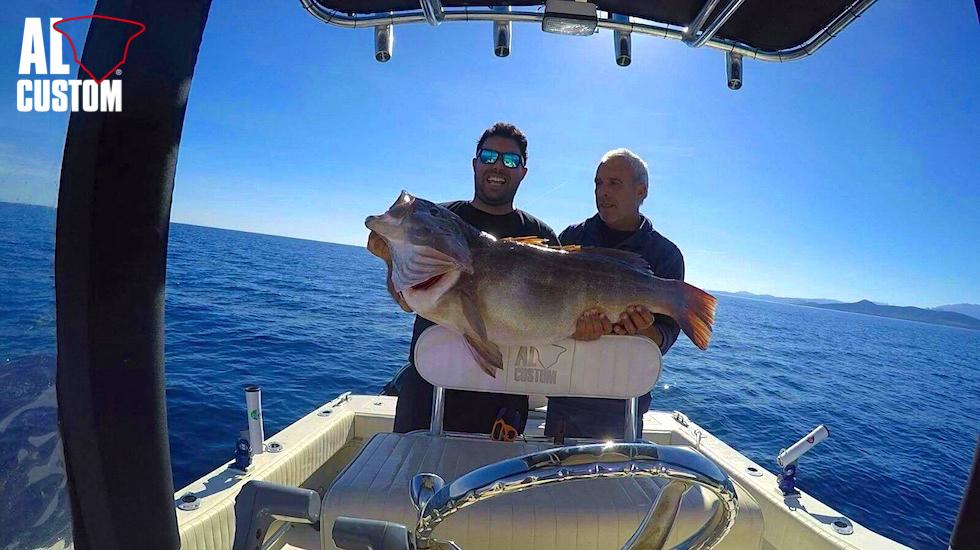 """Cernia pescata a traina col vivo. Pesca atraina a bordo della fishing boat ALCUSTOM AL21 """"Duo"""""""