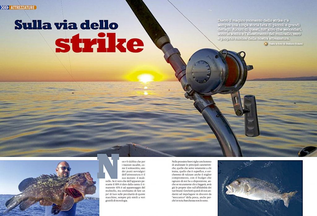 Fishing tackle: canne e mulinelli da pesca